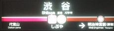 fukutoshin16.JPG