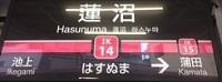 ikegami14-1485b.jpg
