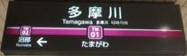 tamagawa01.JPG